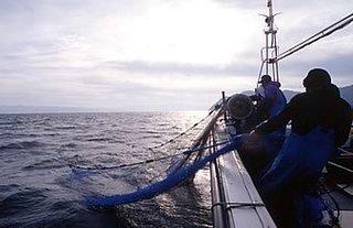 漁業-1.jpg