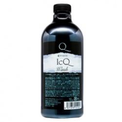 Am-ICQ-SP-1000.jpg