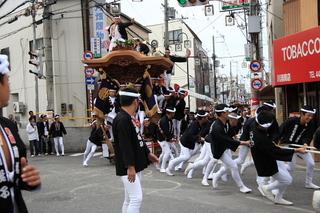 だんじり祭り-3.jpg