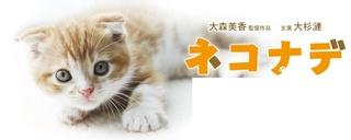 ネコナデ-2.jpg