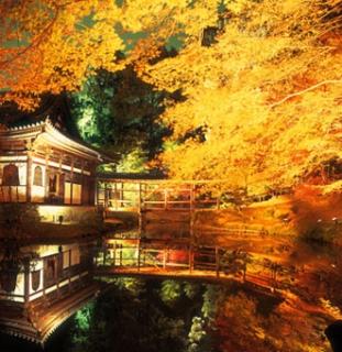 京都-紅葉-2.jpg