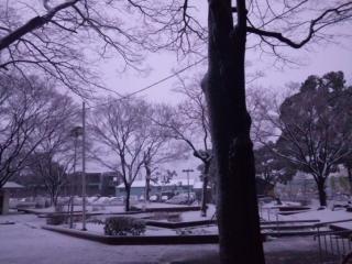 冬の景色-4.jpg