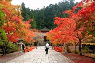 和歌山県-高野町-2.jpg