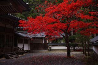 和歌山県-高野町-7.jpg