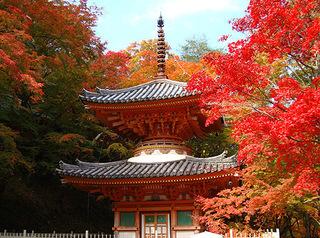 大威徳寺-1.jpg