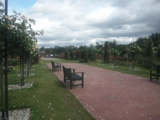 浜寺公園-4.jpg