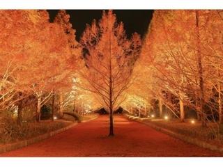 神戸市立森林公園-1.jpg