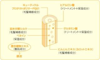 Purefactor-1.jpg